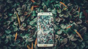 Recomandari telefoane pentru un buget de 3.000 lei – afla care sunt acestea